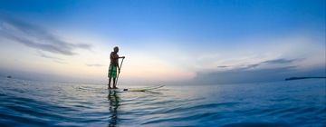 Surfing Stand Up Paddleboarding